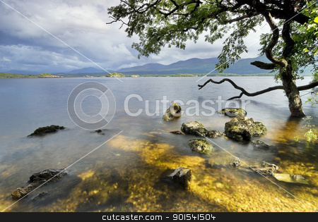Lake view stock photo, Lough Leane Lake view from Ross Island. Killarney National Park, County Kerry, Ireland by Tiramisu Studio