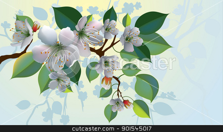 A branch with apple blossoms. Foggy atmosphere appears to be early morning. stock vector clipart, A branch with apple blossoms  by Liviu Peicu