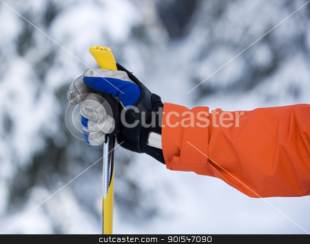 Hand and Ski Pole stock photo, Hand and ski pole with selective focus by Anne-Louise Quarfoth