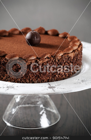 Delicious chocolate cake stock photo, Photo of a delicious chocolate cake with truffle on top. Cake is on a plate with icing sugar with snowflake accents. Focus is on the front edge. by © Ron Sumners
