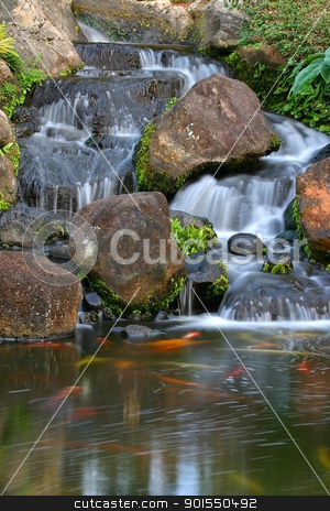 Kauai Falls stock photo, A small waterfall with Koi on the Hawaiian Island of Kauai by Samuel Jolly