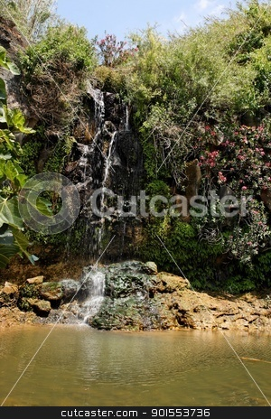 Waterfall falls over black basalt rocks among bushes and flowers stock photo, Waterfall falls over black basalt rocks among bushes and flowers by Shlomo Polonsky