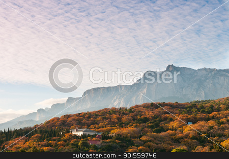 Multicoloured forest under mountains stock photo, Multicoloured autumnal forest under mountains, Crimea, Ukraine by Iryna Rasko