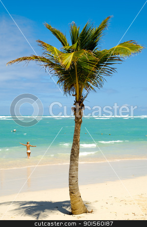 Palm on beach stock photo, Palm on exotic caribbean beach with the coast in the background. In the water a woman is going to swim. by Lars Christensen