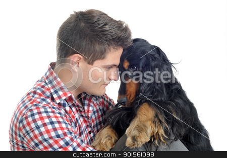 english cocker and man stock photo, portrait of a  purebred english cocker and man in a studio by Bonzami Emmanuelle
