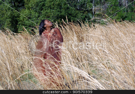 Beautiful Woman Outdoors in Tall Grass (6) stock photo, A lovely young black woman outdoors, standing in tall grass, wrapped in translucent fabric by Carl Stewart