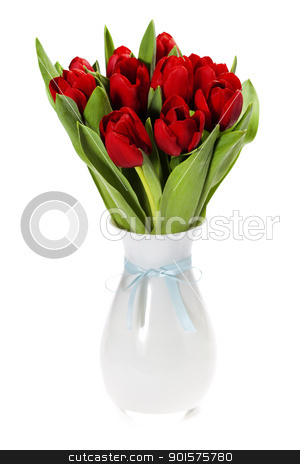 red tulips stock photo, Red tulips on white background (with sample text)   by klenova