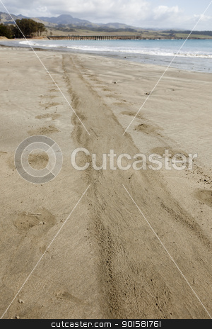 Trail from Elephant Seal on Ocean Shore Sand stock photo, Trail from Elephant Seal on Ocean Front Shore Sand. by Andy Dean