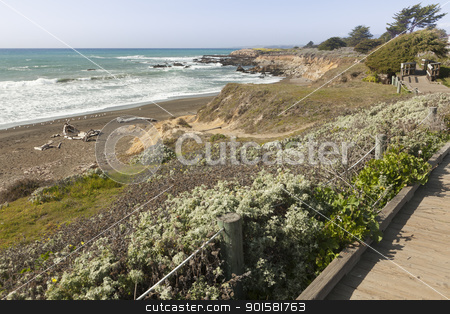 Wooden Walkway Along Ocean Coast stock photo, Wooden Walkway Along Ocean Coast Line. by Andy Dean