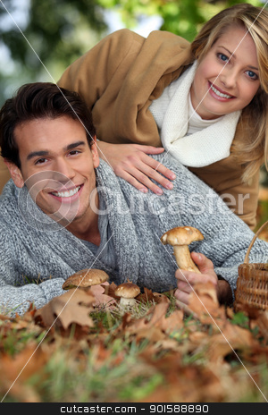 Couple picking wild mushrooms stock photo, Couple picking wild mushrooms by photography33