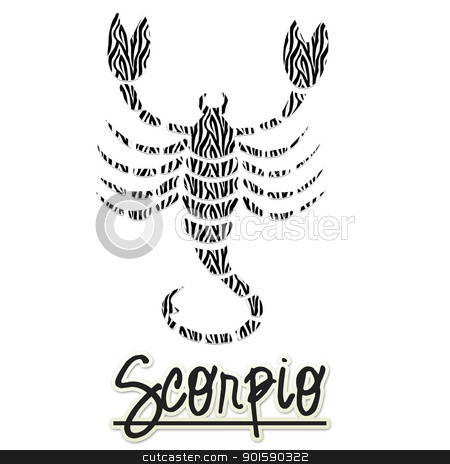 Scorpio Zebra Scorpion stock photo, Scorpio Zebra Scorpion by StacyO