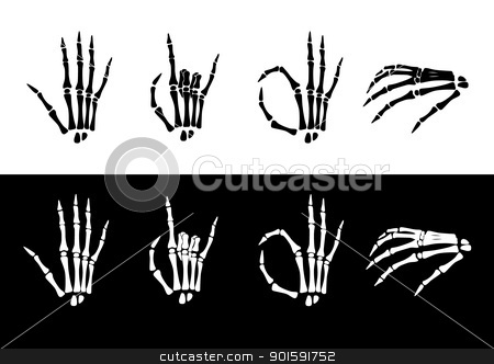 Set of hand anatomy. stock photo, Set of hand anatomy. Vector illustration black and white by dvarg