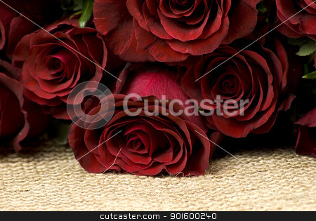 red roses stock photo, bunch of red roses layed over hessian fabric by Desislava Dimitrova