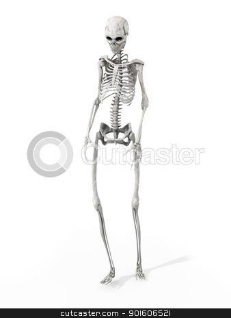 Walking Skeleton stock photo, 3D rendered Illustration. Walking Dead...