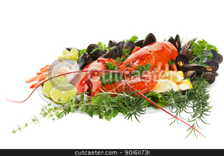 Lobster dish stock photo, Fresh seafood dish with lobster on a white background by Steve Mcsweeny