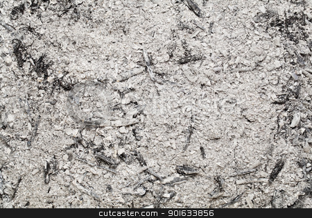 burned wood ash background stock photo, burned wood ash background from home fireplace by Marek Uliasz