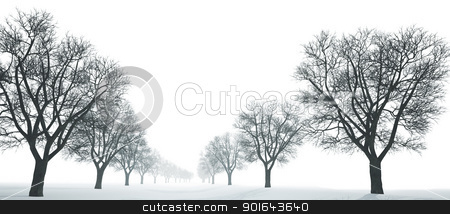 Winter landscape stock photo, Winter landscape  by Mopic
