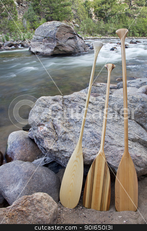 canoe paddles and river stock photo, three wooden canoe paddles on shore of mountain river - Cache la Poudre RIver near Fort Collins, Colorado by Marek Uliasz