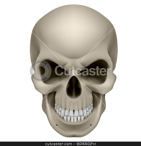 Human Skull stock photo, Freaky Human Skull. The emotion of anger. Illustration on white. by dvarg