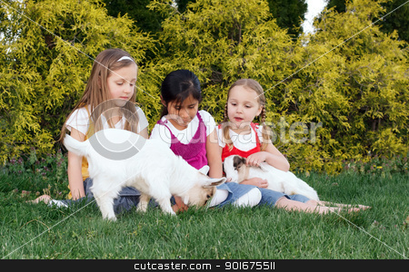 Girls and Goats stock photo, Young girls playing with their pet goats. by Delmas Lehman