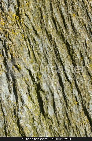 Natural rock texture surface lichen and moss close up. stock photo, Natural rock texture surface lichen and moss close up. by Stephen Rees