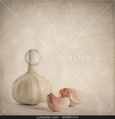garlic retro design stock photo, garlic retro design by FranziskaKrause