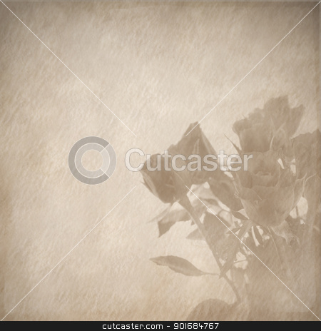 roses retro design stock photo, roses retro design by FranziskaKrause
