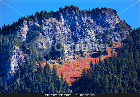 Autumn Carpet Leaves Snoqualme Pass Washington stock photo, Autumn Carpet, Leaves, Mountain, Snoqualme Pass, Washington by William Perry