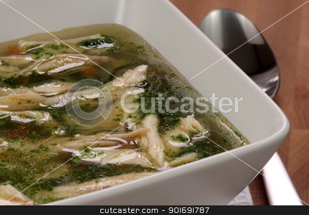 chicken and veggies soup stock photo, chicken breast and vegetables soup  made with low sodium  broth,  on fine wood table table. by Raul Taborda