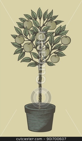 Apple tree woodcut stock vector clipart, Woodcut style decorative apple tree in plant pot on tan background. by fractal.gr