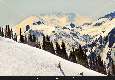 Snowy Mount Saint Helens and Ridge Lines stock photo, Snowy Mount Saint Helens and Ridge Lines Mountain Glacier from Crystal Mountain by William Perry