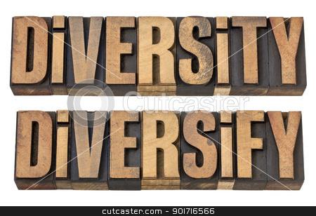 diversity and diversify words in wood type stock photo, diversity and diversify  - isolated words in vintage letterpress wood type by Marek Uliasz