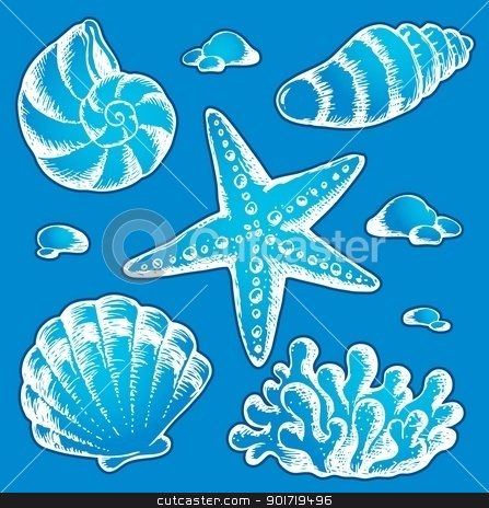 Sea shells drawings 2 stock vector clipart, Sea shells drawings 2 - vector illustration. by Klara Viskova