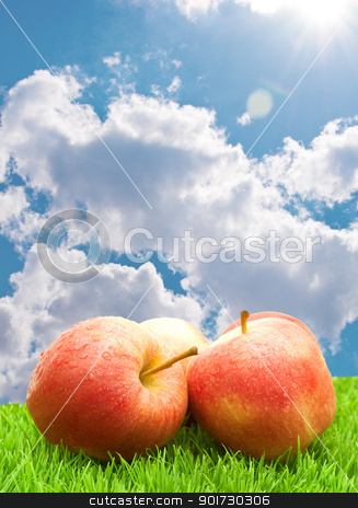 Red Apples on Grass	 stock photo, Red Apples on Green Grass under Blue Sky by JAMDesign