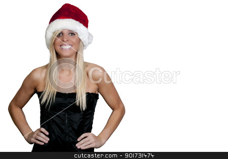 Christmas Shopping stock photo, A beautiful young woman wearing a Santa hat by Robert Byron