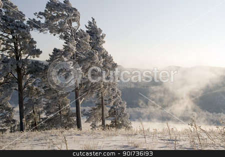 Winter scene stock photo, Cold winter day, beautiful hoarfrost and rime on trees by Yury Ponomarev