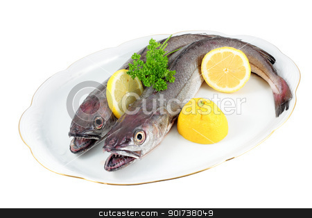 hake stock photo, tray with two raw hake and accompanied by fresh lemon and parsley cut and isolated by croreja