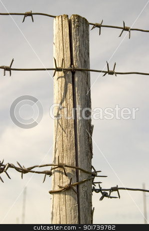 Wooden pole with a prickly wire. stock photo, Wooden pole with a prickly wire on a background of the sky. by Yury Ponomarev