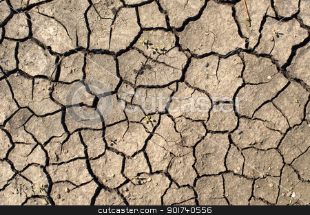 Drought. stock photo, Dry ground. by Yury Ponomarev
