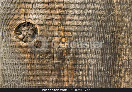 Old  wood texture. stock photo, Wood texture background, old batten. by Yury Ponomarev