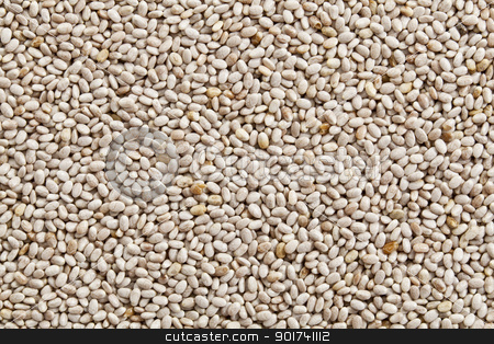 white chia seeds background stock photo, background of organic white chia seeds rich in omega-3 fatty acids by Marek Uliasz