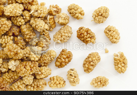 sun-dried white mulberry berries stock photo, background of sun-dried white mulberry berries on an artist canvas by Marek Uliasz