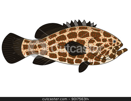 Grouper fish  stock vector clipart, Vector Illustration Of Grouper fish  by Surya Zaidan