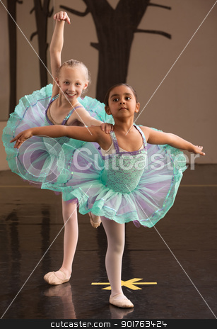 Ballerinas Pose Together stock photo, Two ballet students in fancy dresses posing together  by Scott Griessel