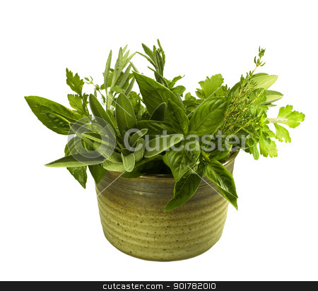 fresh herbs in pottery stock photo, bunches of fresh organic herbs in kitchen pot by sherjaca