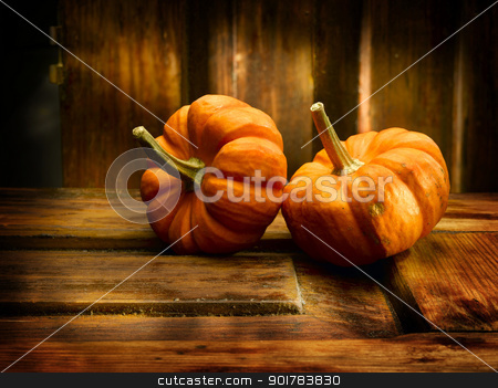Two pumpkins stock photo, Two pumpkins in nice antique environment by Han van Vonno