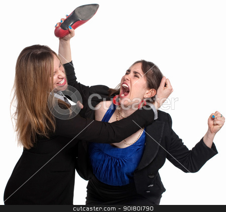 Female Workers Fighting stock photo, Two professional woman fighting over white background by Scott Griessel