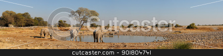 Okaukeujo waterhole panorama 1 stock photo, Panorama from four photos of Okaukeujo waterhole, Etosha National Park, Namibia by Grobler du Preez
