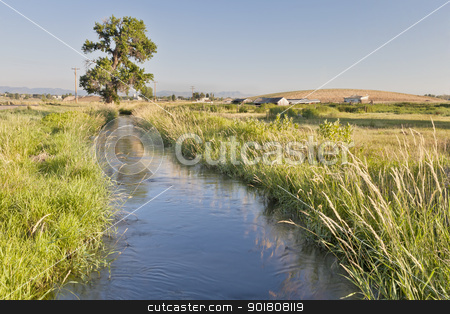 irrigation ditch in Colorado stock photo, irrigation ditch in Colorado farmland near Fort Collins  with Rocky Mountains at a horizon, summer scenety with green grass by Marek Uliasz