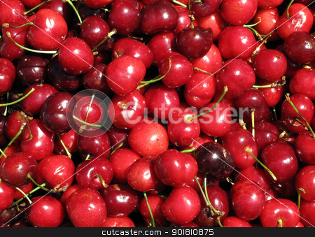 Red cherries close up. stock photo, Red cherries close up. by Stephen Rees